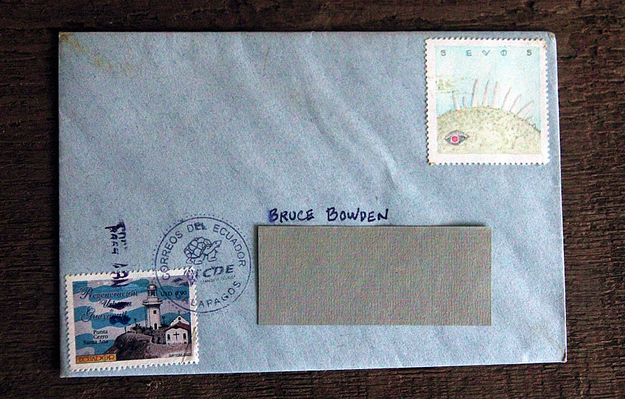 lizard from evo, bruce bowden stamps