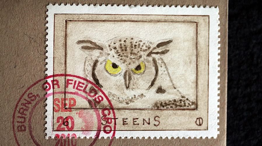 hoot owl from steens by bruce bowden